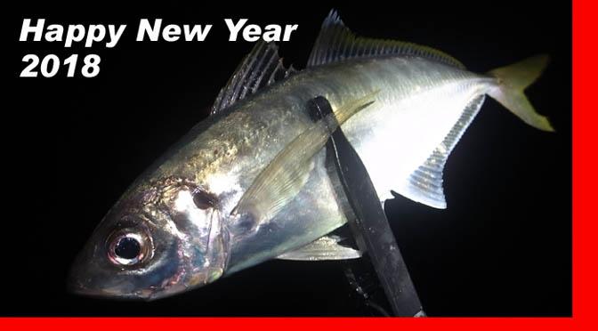 2017釣り納め~2018初釣り