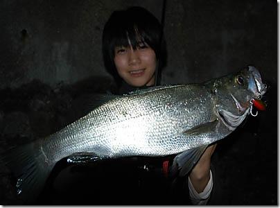 tsunahirayoko1017