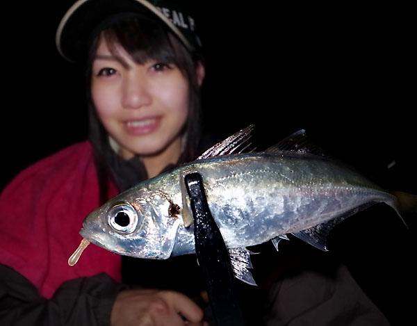 tsunakoajing11