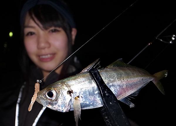 tsunakoajing2