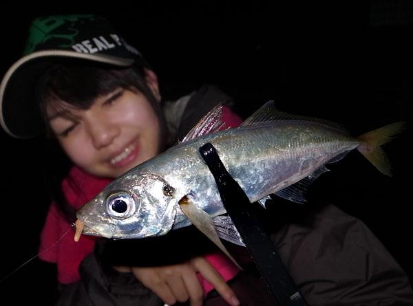 tsunakoajing3