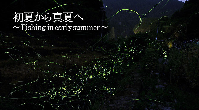 初夏から真夏へ